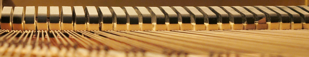 Standard Piano Sales and Service Ltd.